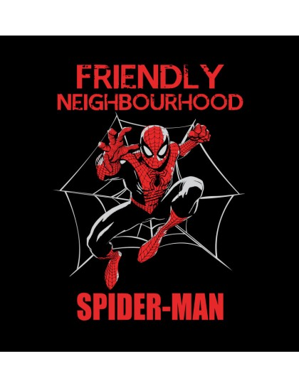 Spider-Man: Friendly Neighbourhood