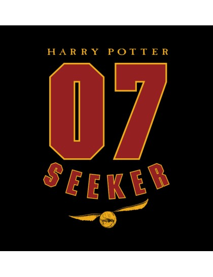 Harry Potter: Seeker Robe