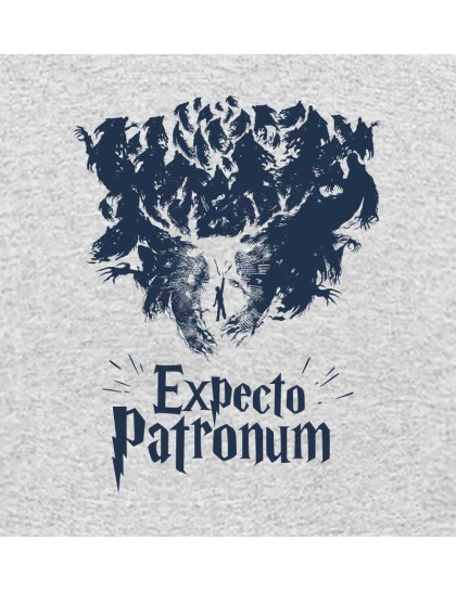 Harry Potter: Expecto Patronum