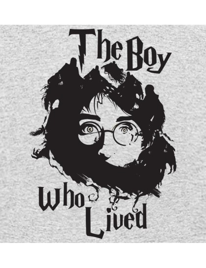 Harry Potter: The Boy Who lived