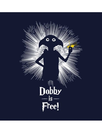 Harry Potter: Dobby